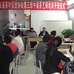 中级茶艺师培训